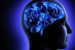 Πώς αλλάζει ο εγκέφαλος στην εφηβεία