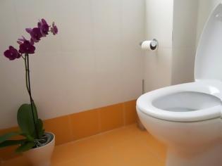 Φωτογραφία για Εγκατέλειψε τον άντρα της...λόγω της τουαλέτας
