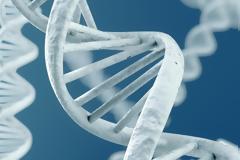 Ερευνητές τοποθ'ετησαμ malware σε ανθρώπινο DNA