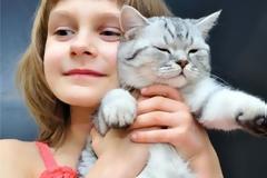 Αγαπούν οι γάτες τις αγκαλιές;
