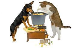 Ειδικοί προειδοποιούν: Μην δίνετε ωμό κρέας στις γάτες και τους σκύλους σας
