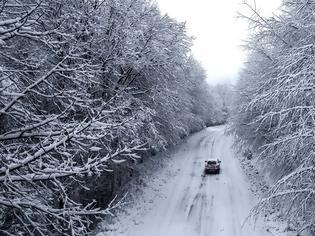Φωτογραφία για Βόλος: Κατολισθήσεις στο Πήλιο - Έντονη χιονόπτωση στην περιοχή