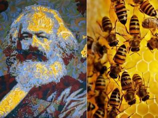 Φωτογραφία για Η μέλισσα και ο αρχιτέκτονας