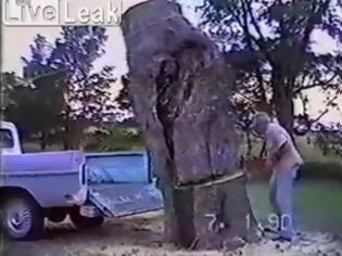 Φωτογραφία για Η κοπή ενός δέντρου κατευθείαν στην καρότσα του φάνηκε καλή ιδέα! - Σίγουρα δεν περίμενε αυτό που συνέβη  [video]