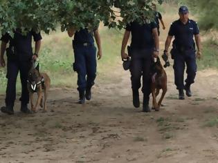 Φωτογραφία για Αναβρασμός στο Τμήμα Σκύλων Ελληνικής Αστυνομίας