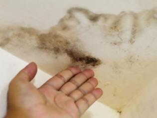 Φωτογραφία για Το μαγικό για να εξαφανίσετε μούχλα και υγρασία