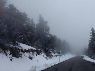 Φωτογραφία για Κλειστά αύριο τα σχολεία στους δήμους Φλώρινας και Πρεσπών λόγω χιονόπτωσης