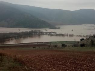 Φωτογραφία για Τρίκαλα: Οι πλημμύρες μετέτρεψαν σε «θάλασσα» τον κάμπο της Φαρκαδόνας