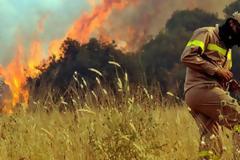 Χαρακόπουλος προς Τόσκα: Δώστε λύσεις στα προβλήματα των Πυροσβεστών
