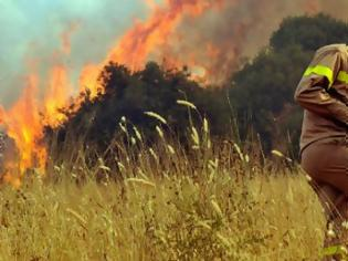 Φωτογραφία για Χαρακόπουλος προς Τόσκα: Δώστε λύσεις στα προβλήματα των Πυροσβεστών