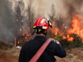 Φωτογραφία για Μεγάλη δασική πυρκαγιά στον Αυλώνα