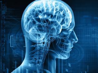 Φωτογραφία για Ανθρώπινη νοημοσύνη: Ερευνητές ανακάλυψαν πάνω από 500 γονίδια που την επηρεάζουν