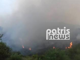 Φωτογραφία για Σε εξέλιξη μεγάλη πυρκαγιά στην Ηλεία