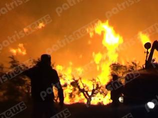 Φωτογραφία για Στις χαράδρες συνεχίζεται η μάχη με τις φλόγες στην Ηλεία