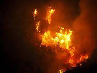 Φωτογραφία για Φωτιά - Ηλεία: Δεν υπάρχει ενεργό μέτωπο στη Φρίξα – Σε επιφυλακή η Πυροσβεστική