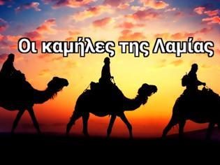 Φωτογραφία για Οι καμήλες της Λαμίας - Σπάνιες εικόνες... [photos]
