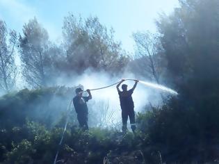 Φωτογραφία για Πισσώνας: Μαίνεται η πυρκαγιά, αλλά δεν απειλεί σπίτια - Δείτε Εικόνες!