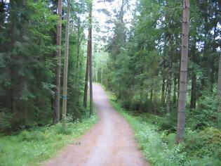 Φωτογραφία για Η φωτογραφία που προκαλεί ανατριχίλα στο διαδίκτυο -Ενα αγόρι «φάντασμα» σε δάσος