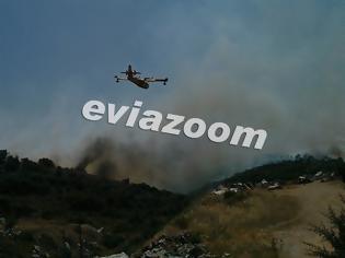 Φωτογραφία για Εύβοια: Υπό μερικό έλεγχο η φωτιά στα Πολιτικά, χωρίς ενεργό μέτωπο στον Πισσώνα - Δείτε τι αναφέρει η Πυροσβεστική!