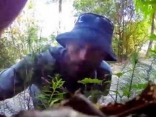 Φωτογραφία για Έβαλε μια μπάλα και μια κάμερα στο δάσος και δείτε πιο ζώο πήγε κι έπαιξε [video]