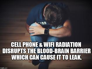 Φωτογραφία για Depression - Could Cell Phone and WiFi Radiation Disrupting the Blood-Brain Barrier Be Playing a Role?