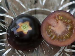 Φωτογραφία για Η ντομάτα που τα έβαψε μαύρα…