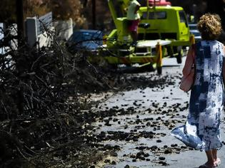 Φωτογραφία για Καταβολή επιδόματος ανεργίας και εφάπαξ σε όσους δεν εργάστηκαν λόγω των πυρκαγιών