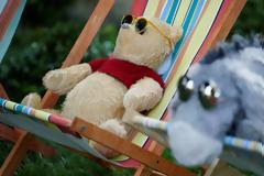 Απίστευτο: Το αρκουδάκι Winnie the Pooh θύμα της κινέζικης λογοκρισίας