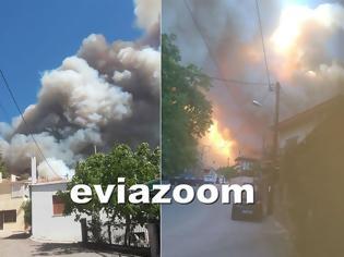 Φωτογραφία για Εύβοια: Μεγάλη φωτιά στο Κοντοδεσπότι - Εκκενώνονται χωριά - Μια «ανάσα» από τα σπίτια οι φλόγες! (ΦΩΤΟ & ΒΙΝΤΕΟ)