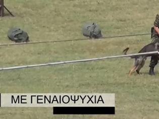 Φωτογραφία για Διεξαγωγή ΤΑΜΣ ΠΕΡΙΤΑΣ με Στρατιωτικούς Σκύλους