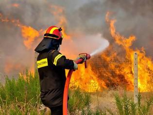 Φωτογραφία για Οι σπίθες πυρκαγιών και το δίκτυο ηλεκτροδότησης