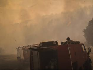 Φωτογραφία για Φωτιά στην Αμαλιάδα: Σε χαράδρα δίνουν οι Πυροσβέστες τη μάχη με τις φλόγες