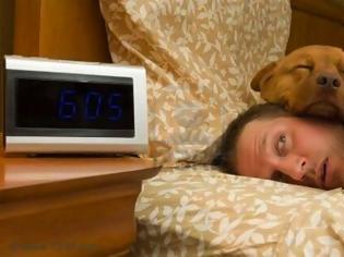 Φωτογραφία για Να κοιμηθώ στο ίδιο κρεβάτι με τον σκύλο μου;
