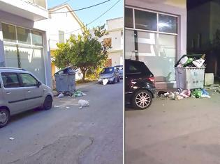 Φωτογραφία για ΒΟΝΙΤΣΑ: Ο κάδος με τα απορρίμματα είναι γεμάτος και τα σκουπίδια ξεχειλίζουν μέχρι έξω....