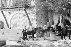 11169 - Πέρασαν 70 χρόνια από τότε που «Εν τω Αγίω τούτω τόπω εχόρευαν κατά την εισβολήν αι ερινύες του συμμοριτισμού, ήτοι τα βδελύγματα της ερημώσεως»