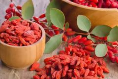 Οφέλη και παρενέργειες των Γκότζι μπέρι (goji berries) που πρέπει να γνωρίζετε