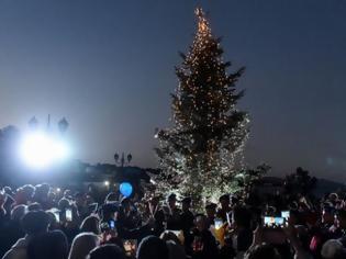 Φωτογραφία για Το Χριστουγεννιάτικο δέντρο αστράφτει στο πυρόπληκτο Μάτι