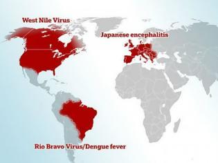 Φωτογραφία για Η Ελλάδα μέσα στις υποψήφιες χώρες να ξεσπάσει θανατηφόρα επιδημία