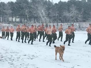Φωτογραφία για Εντυπωσιακές φωτό: Ο Στρατός Ξηράς στα Χιόνια