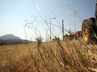 Φωτογραφία για ΝΙΚΟΣ ΜΩΡΑΪΤΗΣ-ΚΚΕ: Σε τραγική κατάσταση βρίσκονται φτωχοί και μεσαίοι αγρότες με ευθύνη ΕΕ και κυβερνήσεων (VIDEO)