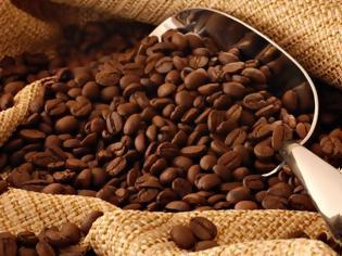 Φωτογραφία για Είδος προς εξαφάνιση ο καφές - Πανικός στους παραγωγούς και στους... καφεπότες