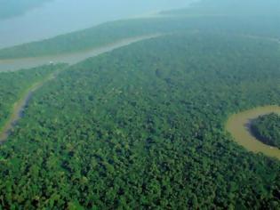 Φωτογραφία για Kίνα και Ινδία δενδροφύτευσαν έκταση όσο το δάσος του Αμαζονίου μέσα σε δύο δεκαετίες