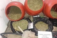 Μεγάλο κύκλωμα ναρκωτικών στην Ηλεία-πωλούσαν και στην Αιτωλοακαρναν