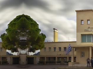 Φωτογραφία για Απάντηση Μπέζου - Μπασάκου στην ΠΟΕΔΗΝ για το Νοσοκομείο Κυπαρισσίας
