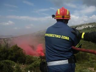 Φωτογραφία για Εκτακτο: Φωτιά στα Σπάτα...