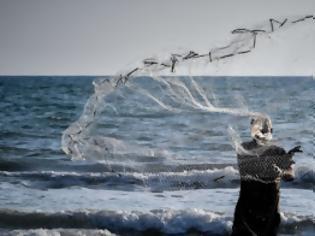 Φωτογραφία για Συναγερμός στο Αιγαίο: Ψάρια-δολοφόνοι στα ελληνικά νερά