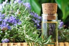 «Φαρμακευτικά και Αρωματικά Βότανα της Δωδεκανήσου»