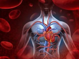 Φωτογραφία για Πέντε «περιττά» όργανα στο σώμα μας