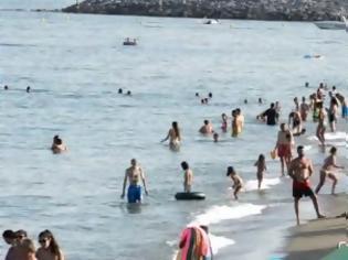 Φωτογραφία για Η μεγάλη απάτη με τις «γαλάζιες σημαίες» στις παραλίες! Ακατάλληλες για κολύμβηση παραλίες που πήραν «Γαλάζια Σημαία»