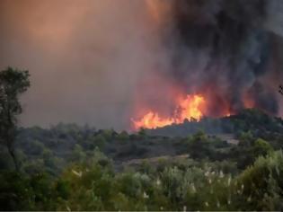 Φωτογραφία για Μεγάλη φωτιά στα Μέγαρα - Καίει δασική έκταση
